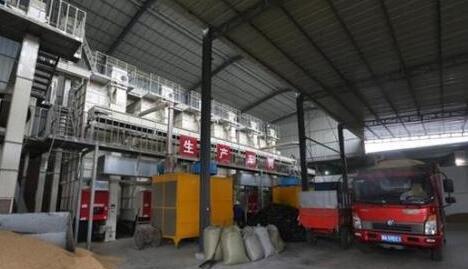 成都邛崃市建成粮食烘干中心32个服务45万亩农作物